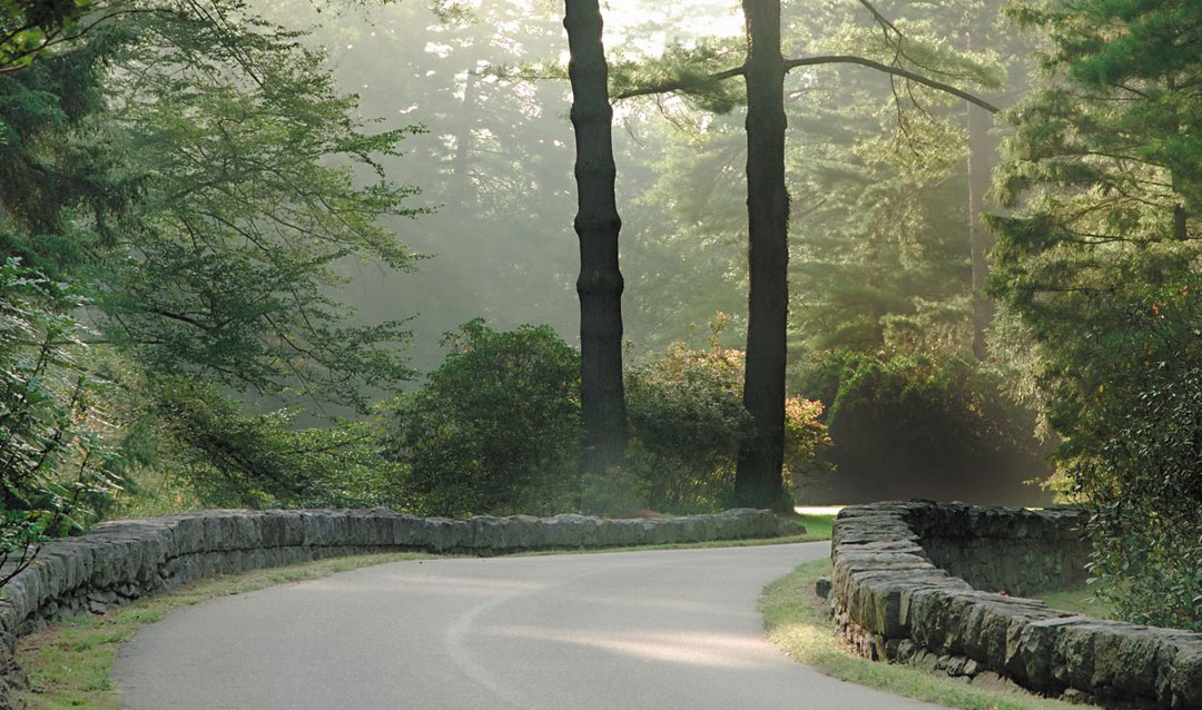 View of the Approach Road in spring