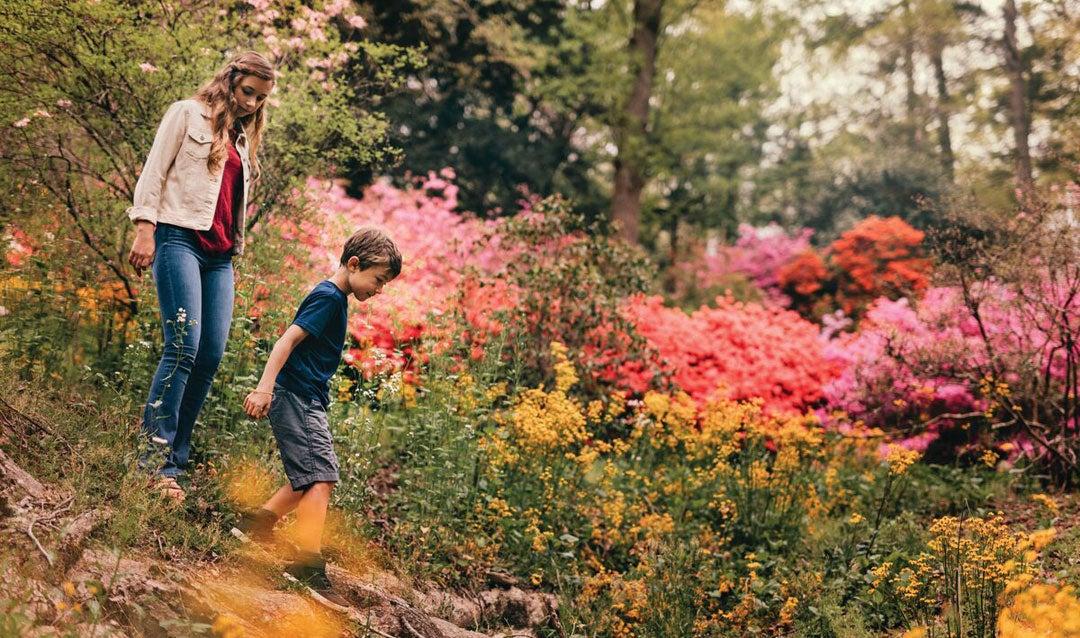 Kids in Biltmore's Azalea Garden
