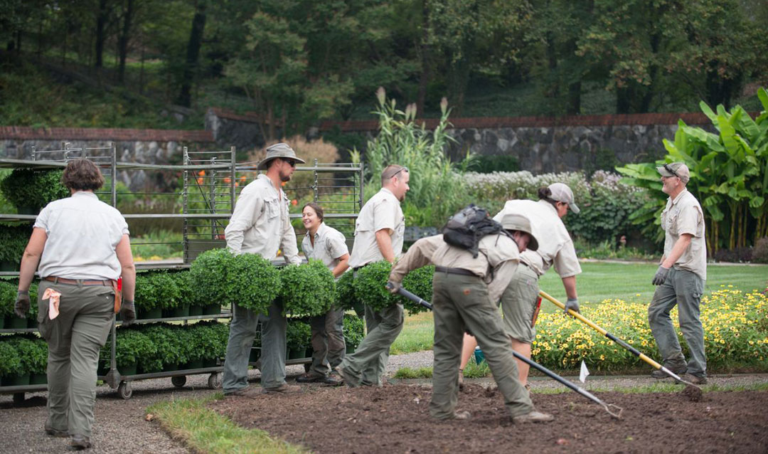 Landscaping crew at work in Biltmore's Walled Garden