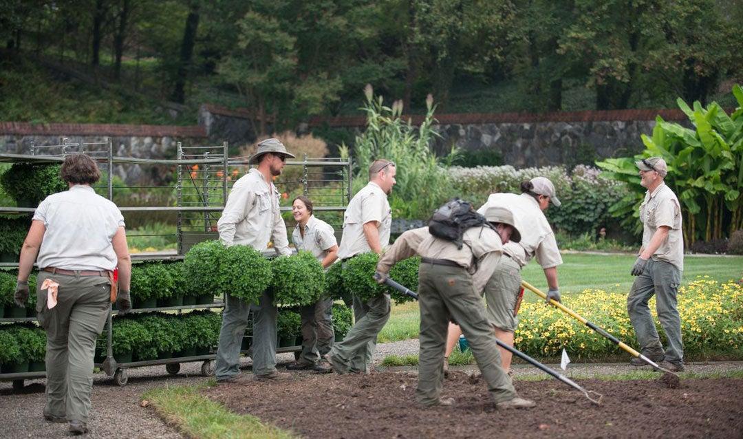 Landscaping crew at work in Biltmore's Walled Garden