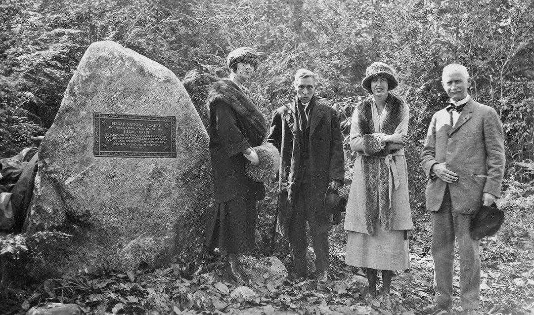 Edith Vanderbilt American Forestry