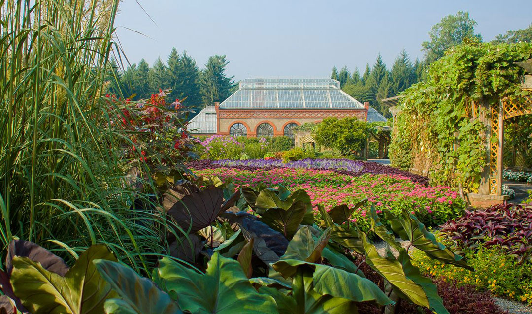 Lush summer blooms in the Walled Garden at Biltmore