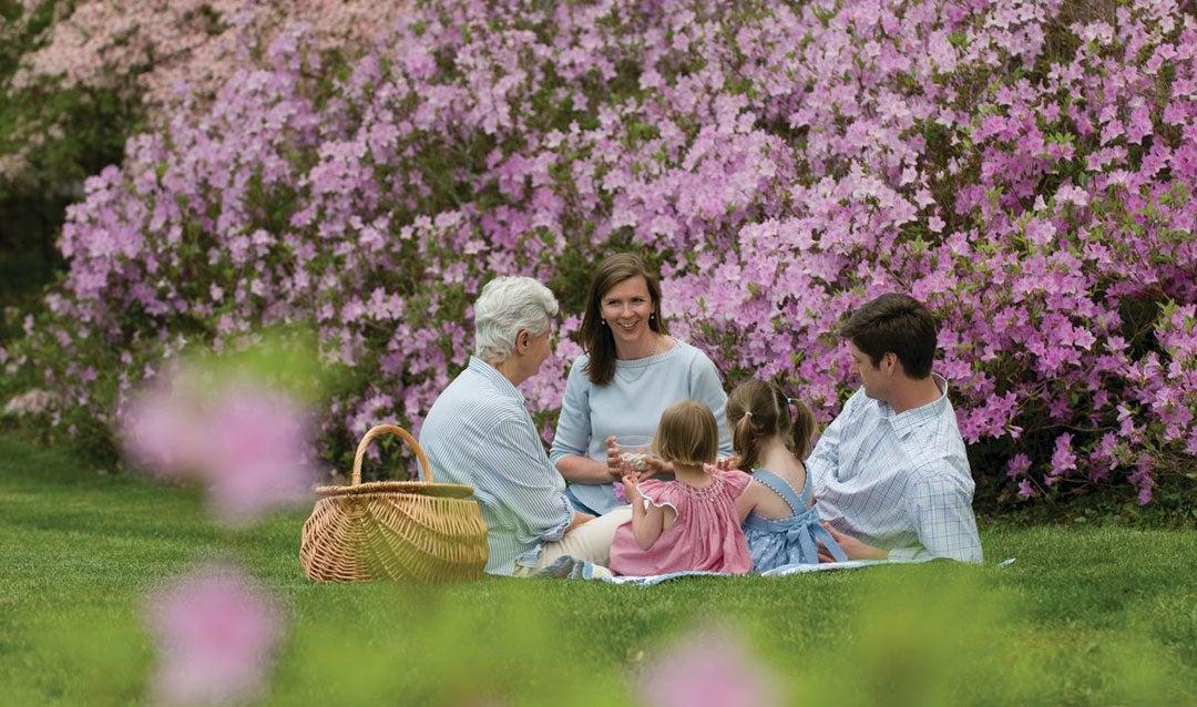 Spring picnic in Biltmore's Azalea Garden