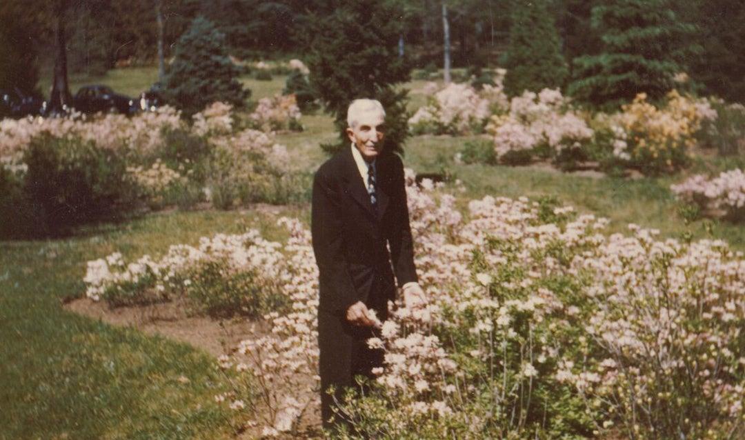 Chauncey Beadle in the Azalea Garden, 1948