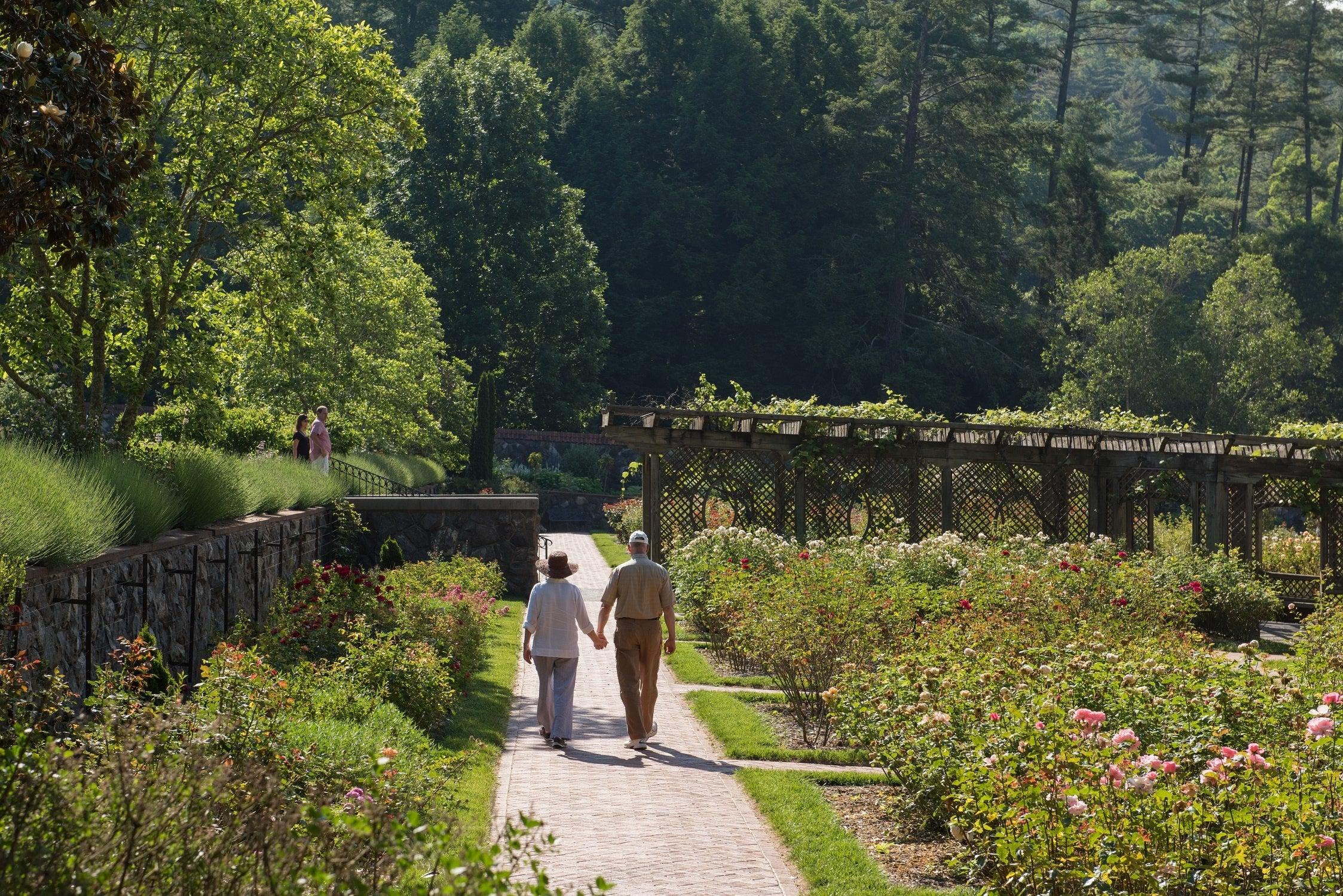 Walled-Garden-Guests
