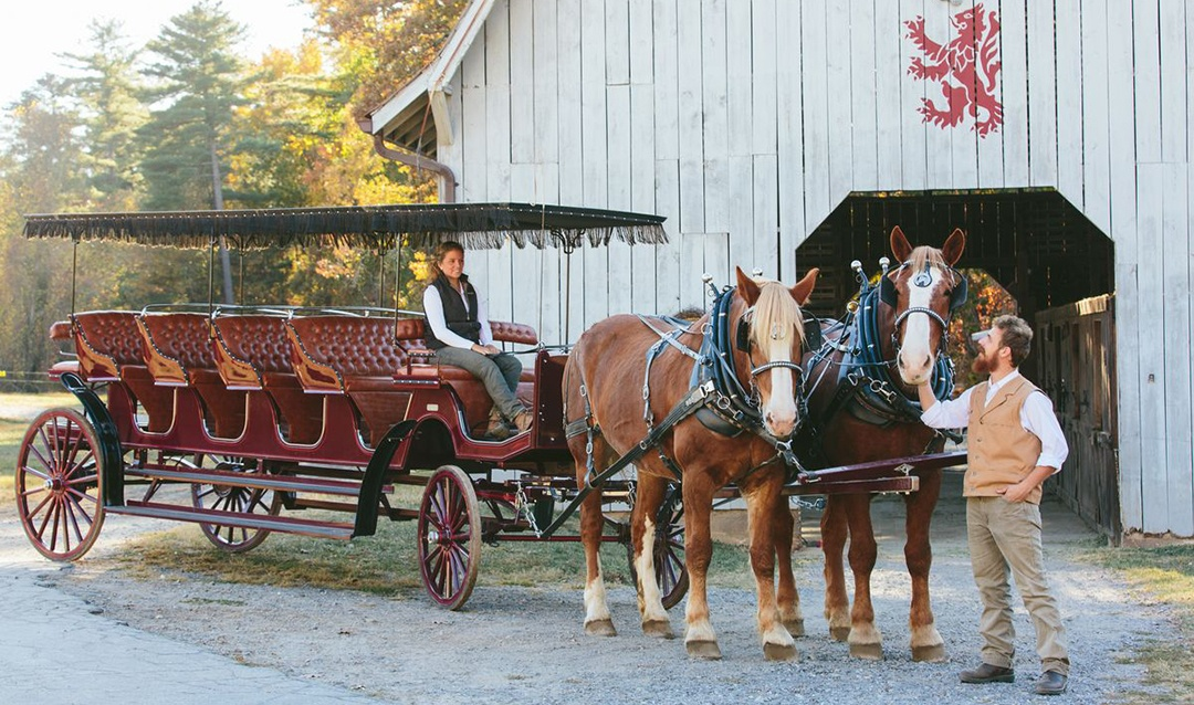 Horse Carriage at Barn