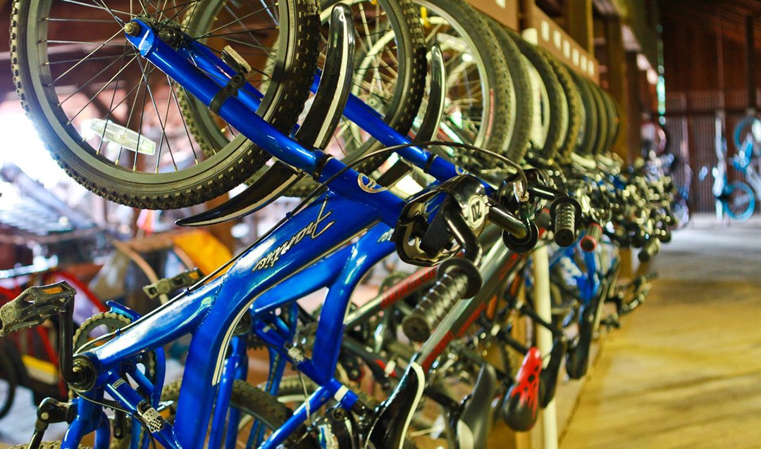 Mountain Bikes in Bike Barn