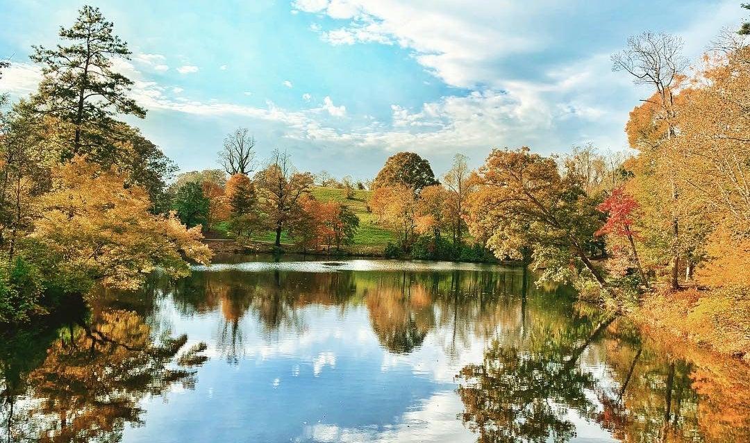 Bass Pond fall
